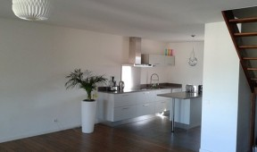 Renovation Appartement Issy